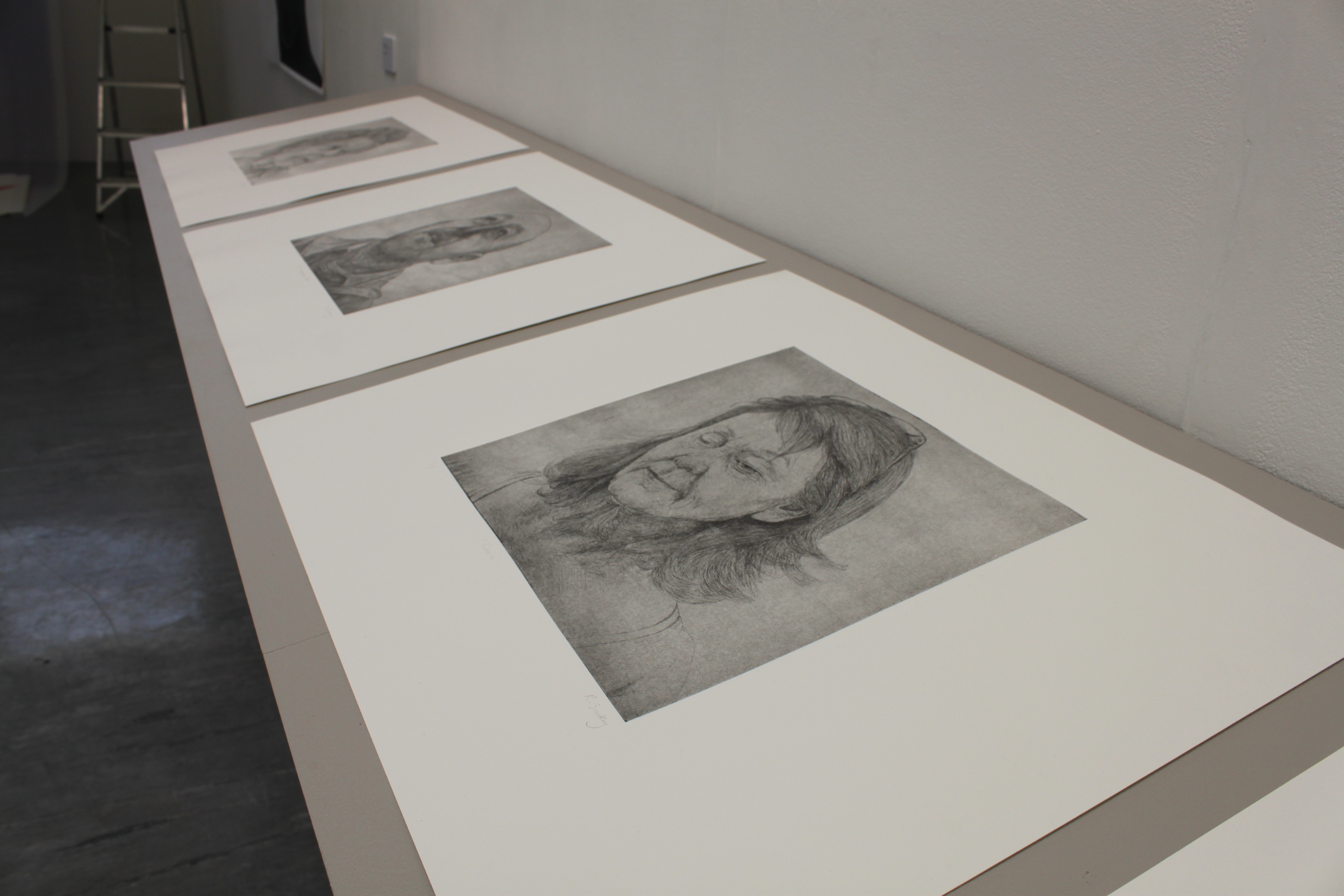 Quiet Exchanges Series (close up 2), 2018, 5 prints, Etchings, 3m shelf. University of Brighton Graduate Show 2018.