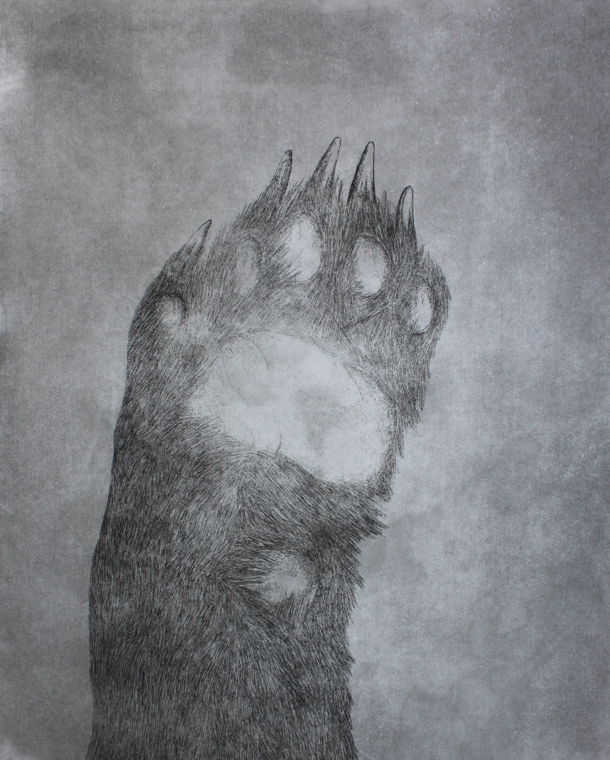 'Hello', 2016, Etching, Edition of 2, 40x50cm