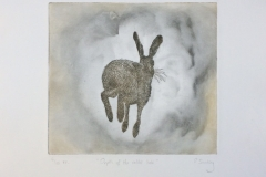 Depth of the Rabbit Hole, 2016, Etching, Edition of 10, 30x45cm (Plate size 18x16.5cm)