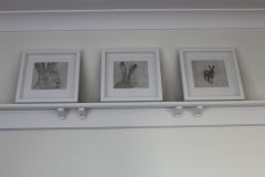 The Startled Hare series, Framed Etchings
