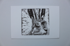 Startled Hare, 2016, Linocut, Edition of 10, 30x20cm